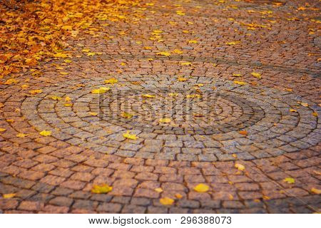 Photo Of A Round Desined Pavement, In Autumn Season, With Colorful Leaves