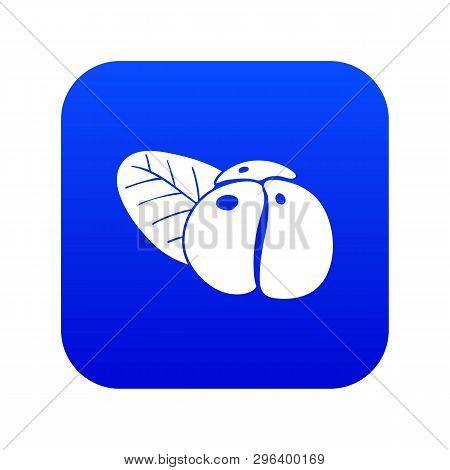 Ephedra Icon Blue Vector Isolated On White Background
