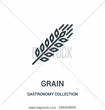 Grain Icon Isolated On White Background From Gastronomy Collection. Grain Icon Trendy And Modern Gra
