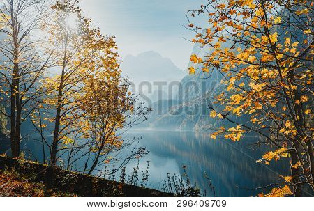 Sunny Autumn Landscape. Mountain Lake With Colorful Leafes Under Sunlight. Gosausee Lake. Vorderer.