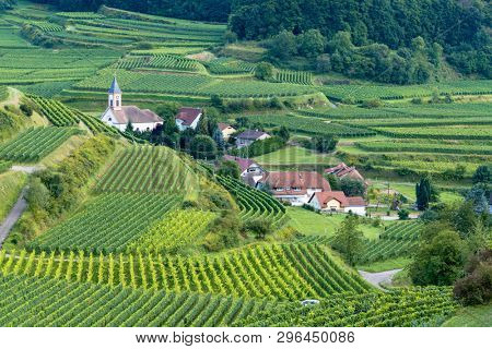 An image of a landscape scenery in Breisgau Germany