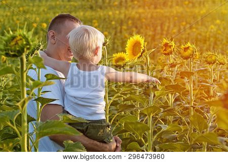 Happy Father With His Little Son In His Arms Standing On A Green Field Of Sunflowers. Close-up.
