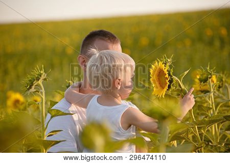 Little Son Holds A Flower Sunflower Sitting On Hands Of The Father In The Background Of Green Field