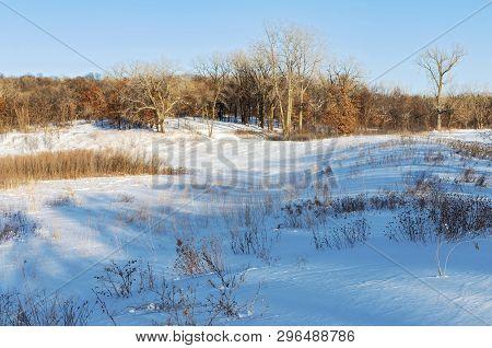 Prairie Hills Against Forest In Snow Covered Battle Creek Park Of Saint Paul Minnesota