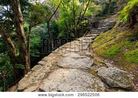 Combblestone path in the forest leading to the Kamikura Shinto temple, Kumano Kodo pilgrimage track, Shingu, Japan