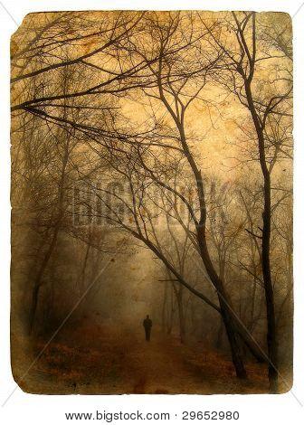 Foggy Landscape. Old Postcard.