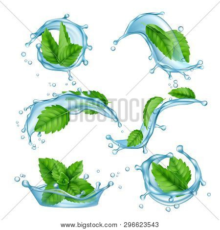 Fresh Water Mint. Liquid Splashes With Green Menthol Leaf For Drink Vector Realistic Collection. Ill