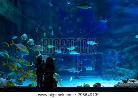 Moscow - April 2, 2018: Young Woman With Baby Watch A Fish In Aquarium. Silhouettes Of People Visiti