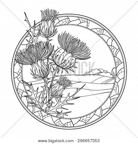 Vector Outline Thistle Or Carduus Plant, Spiny Leaf, Bud And Flower In Mosaic Round Frame In Black I