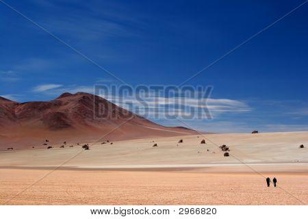 The Strange Dali Rocks Salar de Uyuni Bolivia poster
