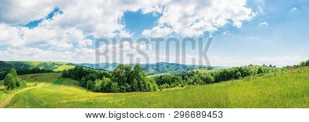 Panorama Of Beautiful Countryside In Summer. Wonderful Landscape In Mountains. Rural Fields And Gras