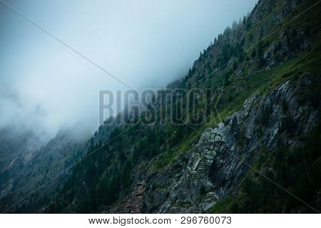 Ghostly Giant Rocks With Trees In Thick Fog. Mysterious Huge Mountain In Mist. Early Morning In Moun