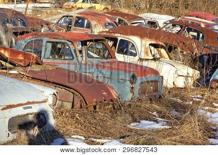 Old Rusty Antique Car Wrecks In A Car Cemetary