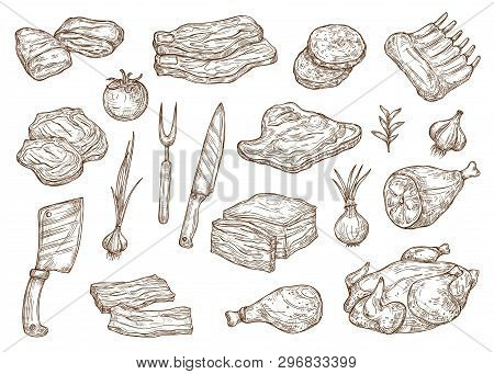 Meat Food Sketch, Butchery Products And Barbecue Cooking Ingredients. Vector Beef Steak, Pork Ham An