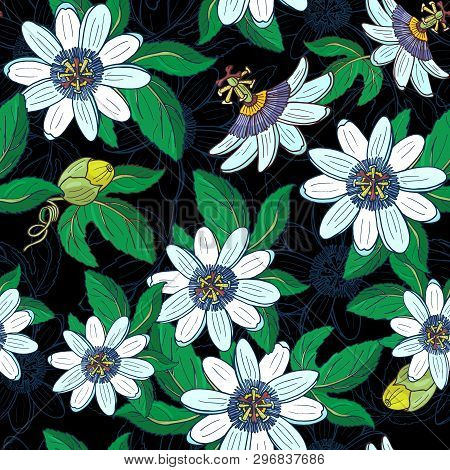 Passionflower Passiflora, Passionfruit On A White Background.floral Seamless Pattern
