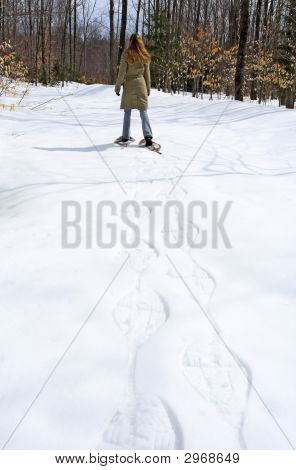 Woman Walking In Snow Shoes In The Forest