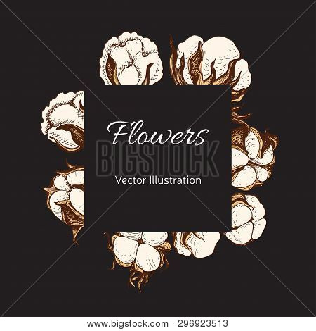 Template For Wedding Invitation. Card Vector Illustration With Cotton.