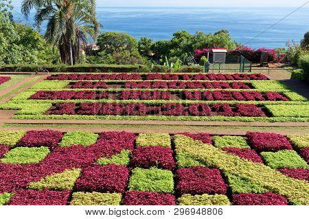 View Over Jardim Botanico Garden On Portuguese Island Of Madeira