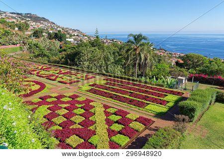 View Over Jardim Botanico Garden - Famous Nature Garden On Portuguese Island Of Madeira