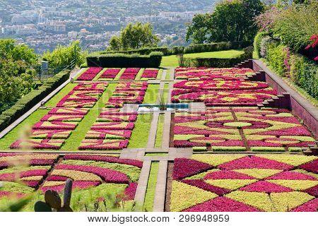 View Over The Botanical Garden Jardim Botanico In Monte On Portuguese Island Of Madeira