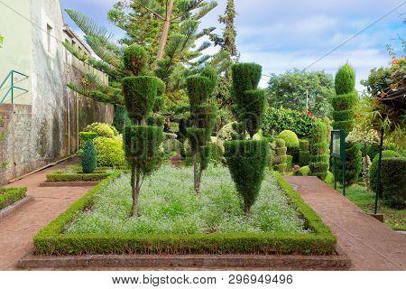 Monte (funchal), Portugal - September 18, 2018: Decorative Plants In Jardim Botanico Garden On Portu