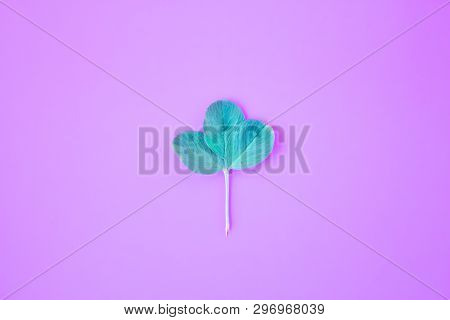 Creative Layout. Frame From Green Branches, Leaves On A Pink Background. Minimal Concept, Flat Lay,