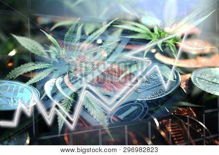 Cannabis Stocks Exploding High Quality Stock Photo