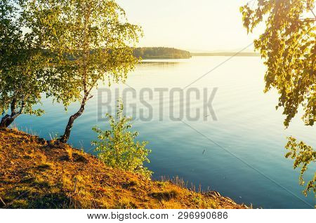 Summer sunset landscape - summer trees at the edge of the cliff and lake lit by evening summer sunset light. Colorful summer landscape scene