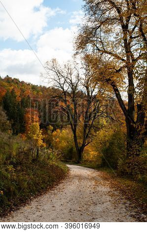 Hilly Forest In Autumn Leaf Colors With Gravel Path In Swabian Alb In Germany