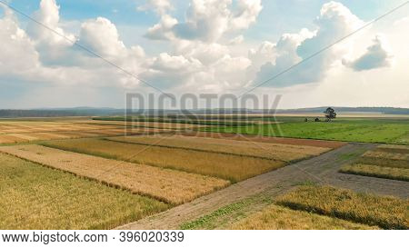 Aerial View From Drone Of Rural Agriculture Fields Of Ripe Corn And Wheat, Surround Countryside Road