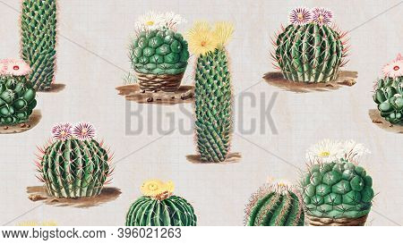 Vintage green cactus with flower illustration pattern background