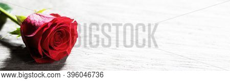 Red rose on wooden background. Blank board, copy space
