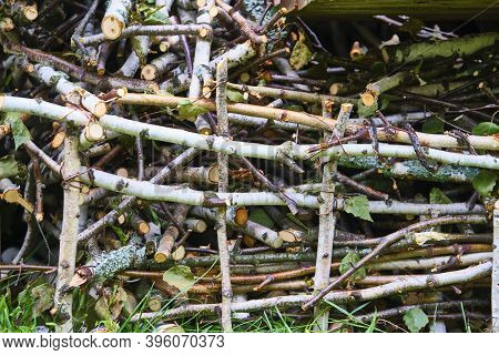 Dry Brushwood Firewood For Kindling The Stove. Color