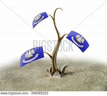 3d Illustration. 3d Sprout With Louisiana Flag On White