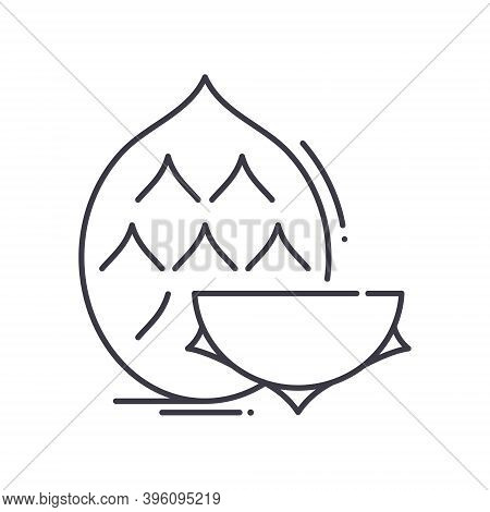 Dragonfruit Icon, Linear Isolated Illustration, Thin Line Vector, Web Design Sign, Outline Concept S