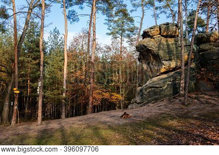 Monument Sandstone Rock Relief Snake Created By Vaclav Levy Between Libechov And Zelizy, Cliff Carvi