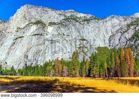 Autumn yellowed grass in the meadows of the valley. Yosemite Park is located on the slopes of the Sierra Nevada. Yosemite Valley