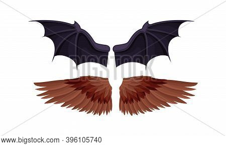 Membranous And Feathered Wings Of Different Flying Creature Vector Set