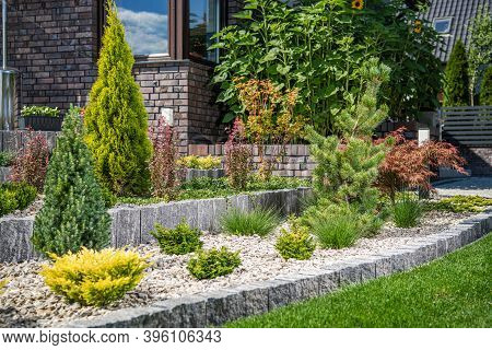 Young Backyard Rockery Garden With Small Plants. Residential Gardening Theme.