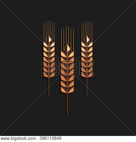 Gold Cereals Icon With Rice, Wheat, Corn, Oats, Rye, Barley Icon Isolated On Black Background. Ears