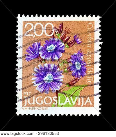 Yugoslavia - Circa 1966 : Cancelled Postage Stamp Printed By Yugoslavia, That Shows Alpine Blue-sow-