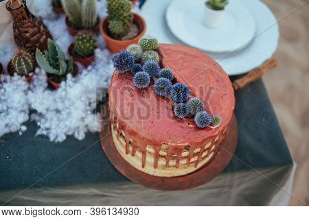 Wedding Cake With Copper Cream And Succulents. Wedding Decoration. Naked Cake With Flowers Decoratio