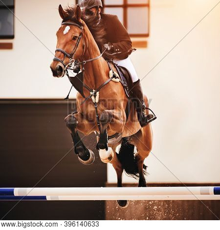 A Beautiful Bay Horse With A Dark Mane And Bushy Tail With A Rider In The Saddle Jumps Over A High W