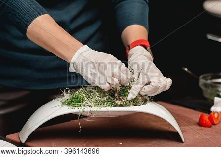 Fresh Green Cress In A White Plate