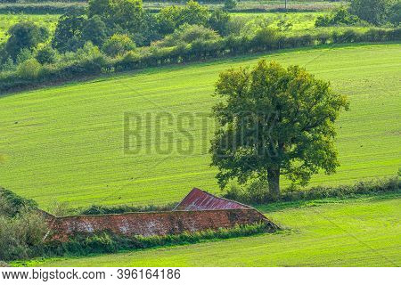 A Scenic View Of A Tree Next To A Rustic Old Outbuilding Set In The Beautiful British Countryside Of