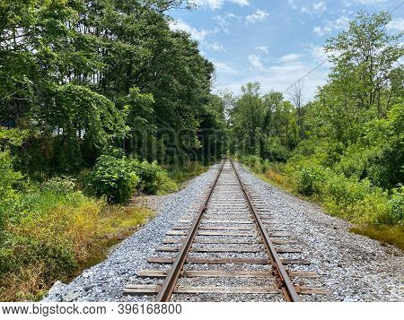 A Straight Railroad Track In The Green Of The Forest.