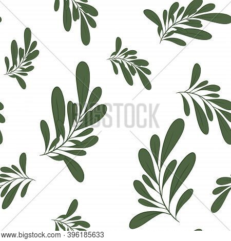 Delicate Seamless Pattern With Beautiful Branches With Leaves In Restrained Colors For Textile Backg