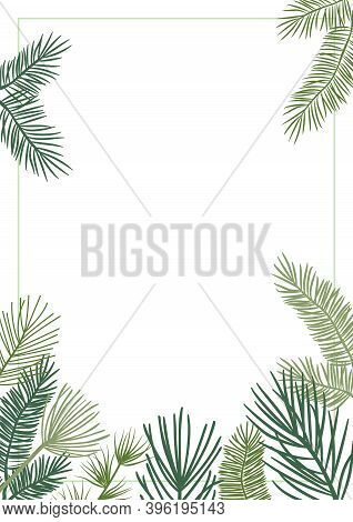 Christmas Plant Vector Border With Fir And Pine Branches, Evergreen Wreath And Corners Frames. Natur