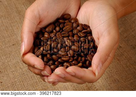 Roasted black coffee beans in woman hands closeup