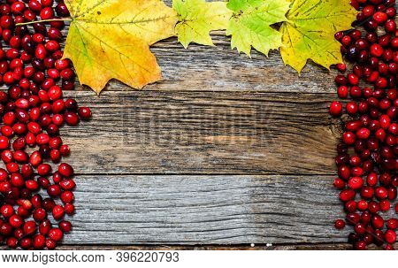Autumn background with weathered wood, cranberry and leaves
